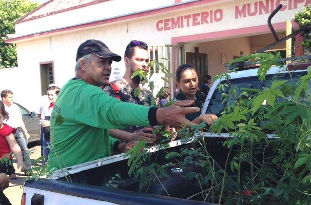 Agentes de endemias distribuem 200 mudas de árvores