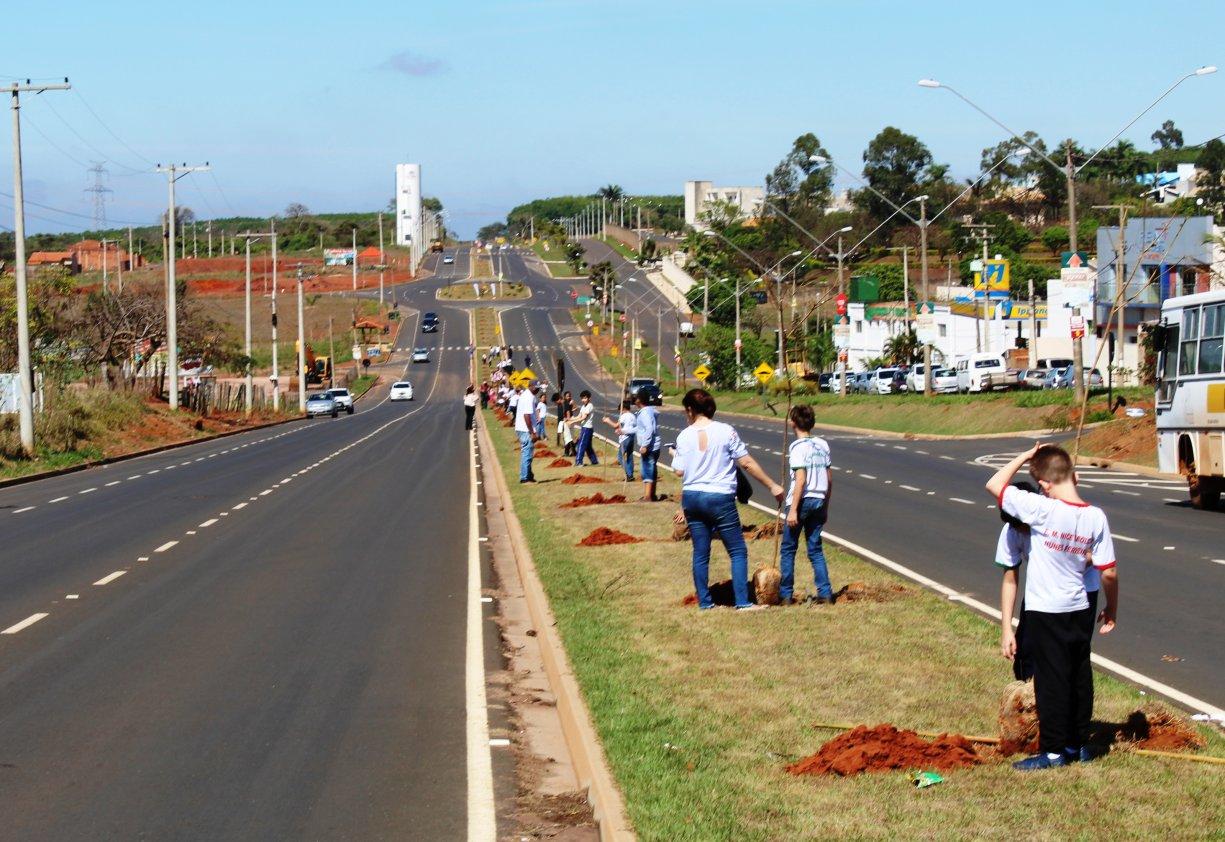 Prefeitura comemora Dia da Árvore com plantio de 150 Ipês em avenida